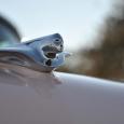 2013-phx-caddy-ornament