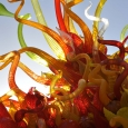 2014-phx-chihuly-no-2