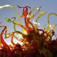2014-phx-chihuly-no-3