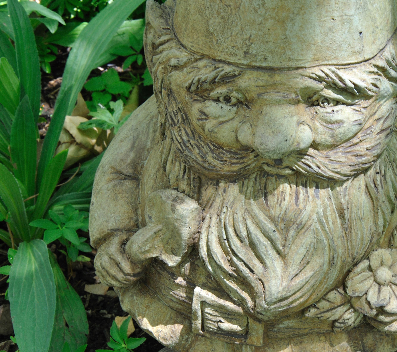 gnome-study-no-2